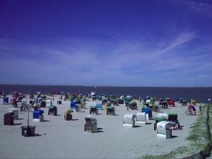 Bild: Nordsee / Ostfriesland strandnahes Ferienhaus 1-6 Personen ( Hund erlaubt)
