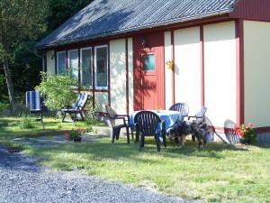 Bild Ferienhaus im Birkenhof Steinölsa