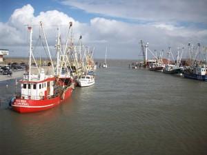 Bild: Nordsee Ferienhaus Dornumersiel nur ein paar Minuten vom Strand entfernt